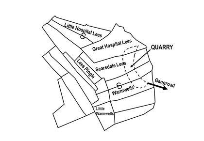 Limestone - Quarry